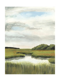 Marsh Landscapes II
