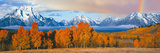 Autumn Trees with Mountain Range in the Background