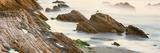 Seagull Perching on the Beach  Gaviota  Santa Barbara County  California  Usa