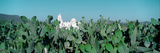 Mission San Xavier Del Bac from 1783-1797  Tucson  Arizona