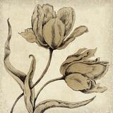 Paper Tulip II