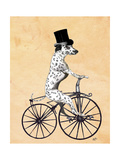 Dalmatian on Bicycle