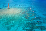 Aerial View of Diving and Snorkeling Boats