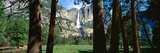Upper and Lower Yosemite Falls in Spring  California
