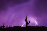An Energized Lightning Storm Erupts During Monsoon Season Near Tucson  Arizona