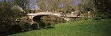 Footbridge in a Park  Central Park  Manhattan  New York City  New York State  Usa