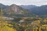 A Train Travels across a Bridge in the Fall in Alaska