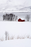 A Lone Red House in a Snowy Winter Landscape