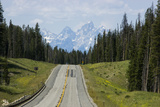 A Highway Leads Through the Forest in Grand Teton National Park