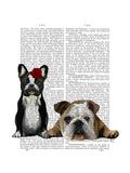 French Bulldog and English Bulldog