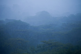 Rain Falls on the Costa Rican Jungle