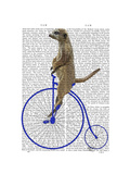 Meerkat on Blue Penny Farthing Reproduction d'art par Fab Funky