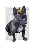 French Bulldog King