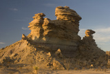 A Sculpted Sandstone Hoodoo in the Tornillo Creek Drainage of Big Bend National Park  Texas