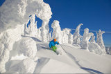 A Skier Turns in Deep Powder Beneath Frozen Trees at the Big White Ski Resort