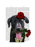 Black Labrador with Roses