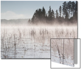 Mist Rises Off Lake of the Woods at Dawn