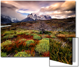 A Patagonia Scenic with the Andes Mountains  Scrub Vegetation  a Dead Tree  and Dramatic Clouds