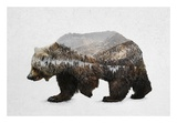 The Kodiak Brown Bear Reproduction d'art par Davies Babies