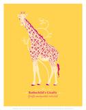 Giraffe - WWF Contemporary Animals and Wildlife Print