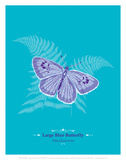 Butterfly - WWF Contemporary Animals and Wildlife Print
