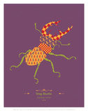 Stag Beetle - WWF Contemporary Animals and Wildlife Print