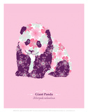 Giant Panda - WWF Contemporary Animals and Wildlife Print