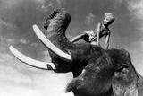 Elephant Boy  De Robertflaherty Et Zoltankorda Avec Sabu  1937