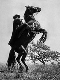 Le Signe De Zorro the Sign of Zorro De Norman Foster Et Lewis R Foster Avec Guy Williams 1958