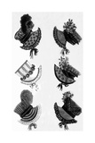 Woman's Fashion in 1815  France : Different Sorts of Hats  Engraving