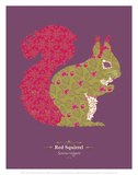 Red Squirrel - WWF Contemporary Animals and Wildlife Print