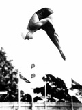 Pat McCormick  First to Win Back-To-Back Olympic Gold Medals in Platform and Springboard Diving