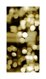 Golden Reflections Triptych I