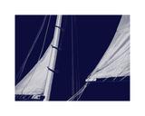Schooner Sails II
