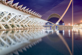 La Ciudad De Las Artes Y Las Ciencias (City of Arts and Sciences)  Valencia  Spain