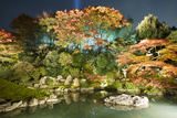 Night Illuminations of Temple Gardens  Shoren-In Temple  Southern Higashiyama  Kyoto  Japan