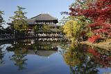 The Buddhist Temple of Topdai-Ji  Nara  Kansai  Japan