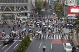 Shibuya Crossing (The Scramble)  Shibuya Station  Shibuya  Tokyo  Japan  Asia