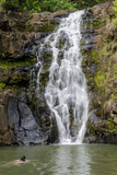 Waimea Falls  Waimea Valley Audubon Park  North Shore