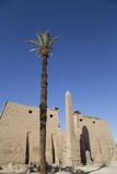 Obelisk  25 Meters High in Front of Plyon 65 Meters Wide  Luxor Temple