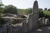 Coddhu Vecchju (Tomba Di Giganti)