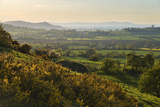 Cotswold Landscape with View to Malvern Hills