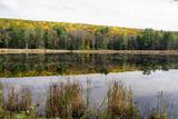 Lake Near Great Barrington  the Berkshires  Massachusetts