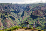 Puu Hinahina Lookout  Waimea Canyon State Park  Kauai  Hawaii  United States of America  Pacific
