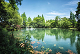 Peaceful Lake Scene with Greenery at One of the Lesser known Spots at West Lake in Hangzhou
