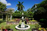 Nevis Botanical Garden  Nevis  St Kitts and Nevis