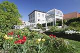 Rosengarten (Rose Garden) in Spring  Ettlingen  Baden-Wurttemberg  Germany  Europe
