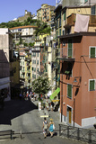 Narrow Streets in the Clifftop Village of Riomaggiore  Cinque Terre  Liguria  Italy