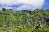 Hau'Ula Forest Reserve  Koolau Mountain Rage  Oahu  Hawaii  United States of America  Pacific