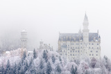 Neuschwanstein Castle in Winter  Fussen  Bavaria  Germany  Europe